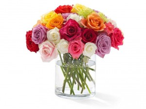 mixed_color_rose_bouquet_love_valentine_hd-wallpaper-589827.jpg