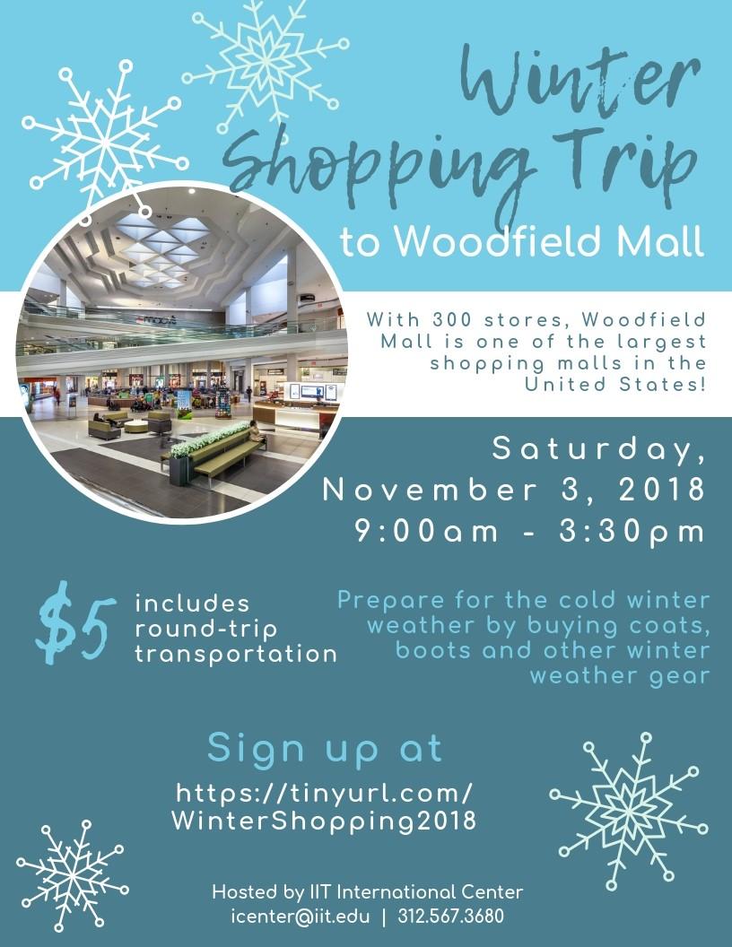 Winter Shopping Trip.jpg